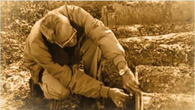 Ronnie Eddins examining logs.