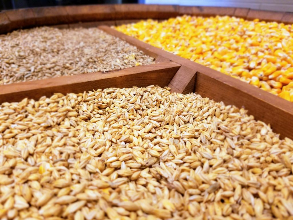 Corn, Rye, and Malted Barley laid out at Wild Turkey.